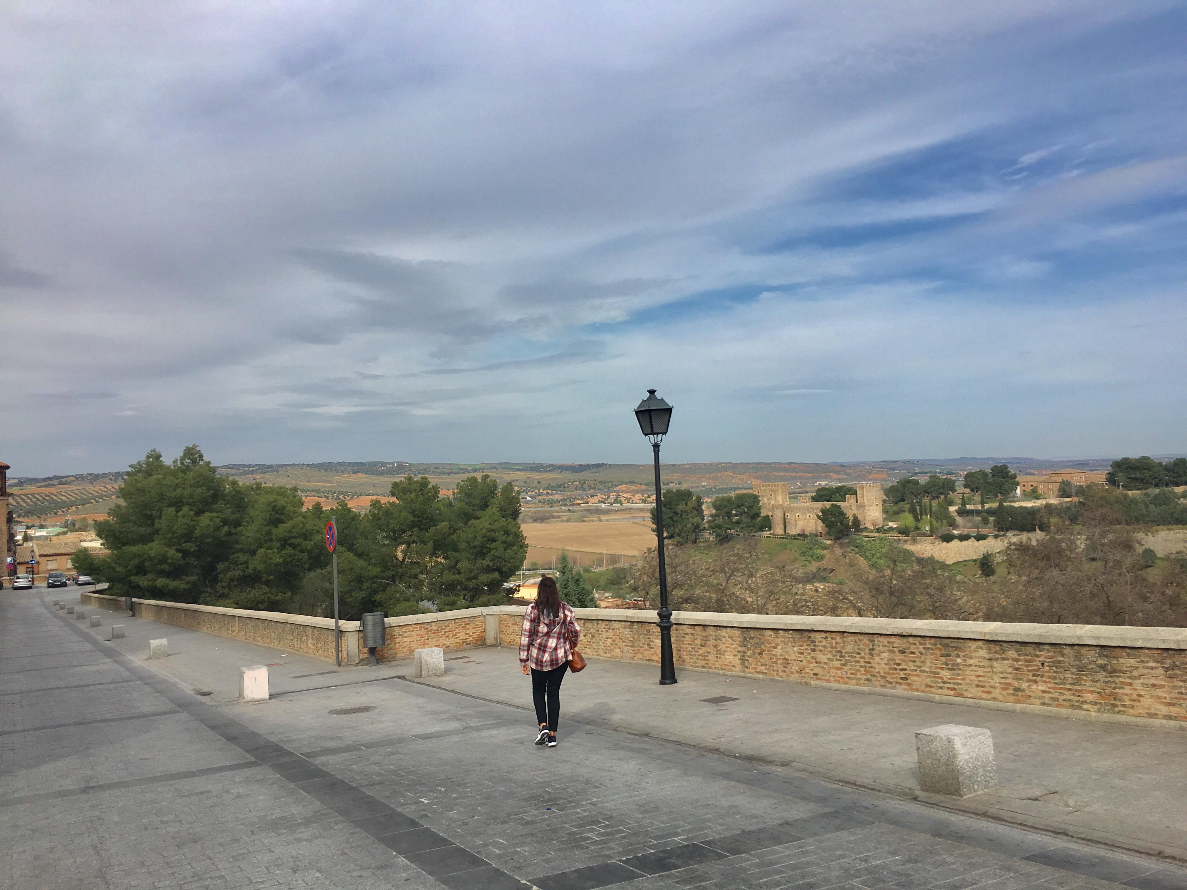 Toledo Rotaamada 4
